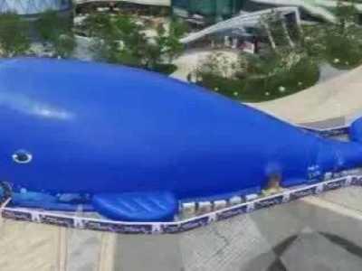 鲸鱼海洋球 巨型鲸鱼百万海洋球乐园来袭