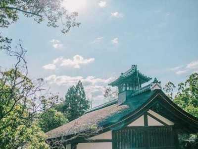 日本人口那么多 为什么很多人还能独居栋小楼